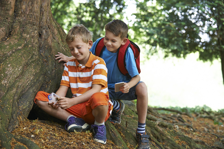 Two Boys Finding Item Whilst Geocaching In Forest Stock fotó