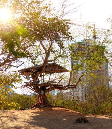 Tree hut with Skyscraper on the back at Pratumank Hill