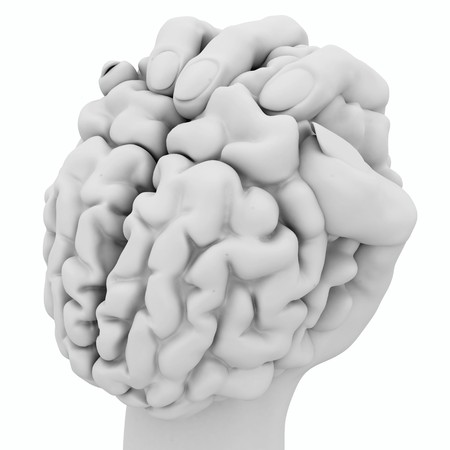squeezing: White 3d hand holding a human brain, isolated