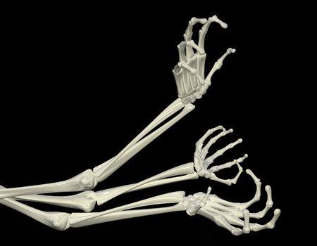 3d skeletal arm, isolated, dark background