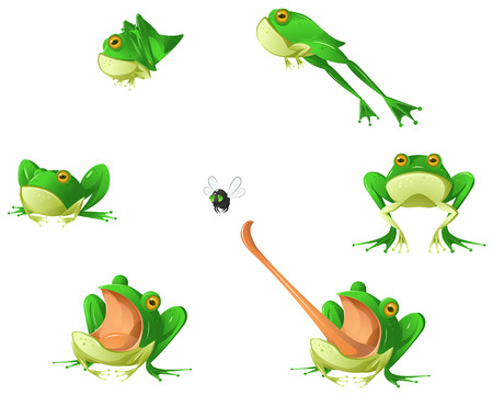 Frog cartoon design element set, isolated vector Stock Illustratie