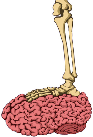 oppressive: Skeleton foot stepping on brain vector, vertical,  isolated