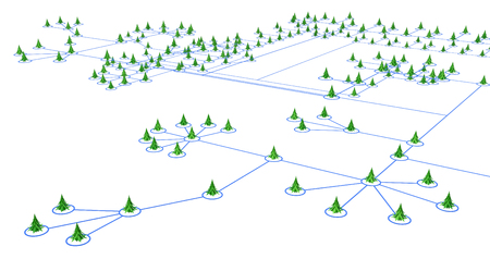 over white: Fir trees 3d models connected by lines, over white Stock Photo