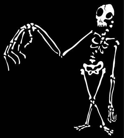 Skeleton Halloween cartoon character white silhouette, vector illustration, horizontal, isolated