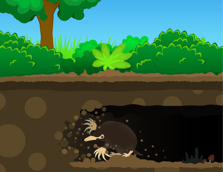 Mole digging tunnel underground, color vector cartoon illustration horizontal