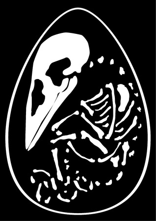 Hatchling bird skeleton inside egg, vector, vertical, black background, isolated 일러스트