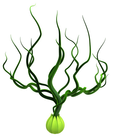 Plant vines green bud sprout growing out, 3d illustration, over white, isolated