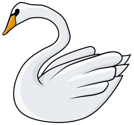 Swan bird drawing, vector, horizontal line drawing colored, over white, isolated