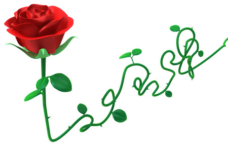 Red rose long stem object isolated, 3d illustration, horizontal