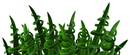 Plant vines green growing twisting spiral spikes, 3d illustration, horizontal, isolated, over white Фото со стока