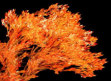 Fire tree branch special effect abstract, dark background, horizontal, isolated