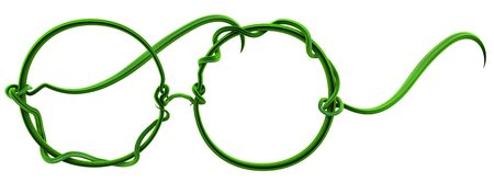 Plant vines green growing twisting glasses shape, 3d illustration, horizontal, isolated, over white