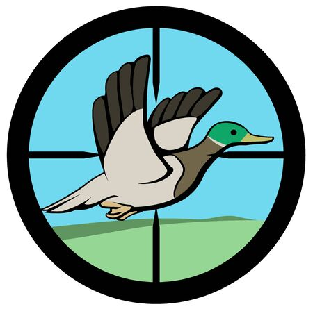 Duck hunted flying up inside crosshairs circle cartoon, color vector illustration, horizontal, over white, isolated