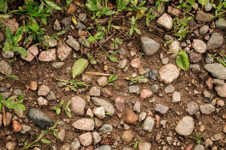 Top view on natural earth with stones and grass, horizontal Stock Photo