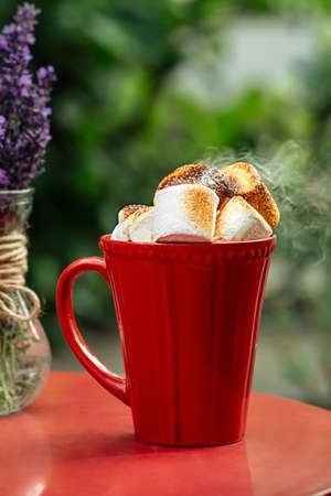 Side view on hot beverage with toasted marshmallows in red mug Фото со стока - 156429695