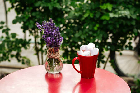 Hot beverage with toasted marshmallows in red mug on red table decorated with lavander in vase Фото со стока - 156506812