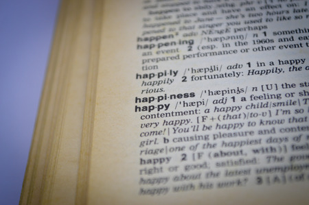 english dictionary: happy and happiness  word in English dictionary