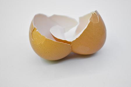 eggshell: Broken eggshell