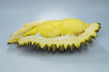 Durian and  thorn-covered rind on gray background.