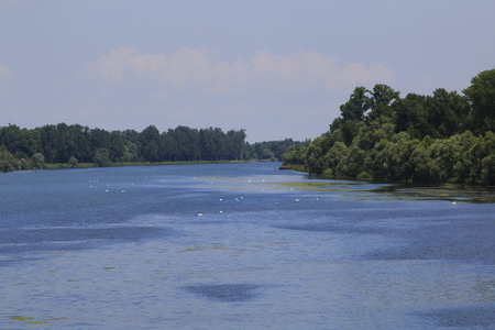 The Rhine near Nonnenweier, natural border between France and Germany