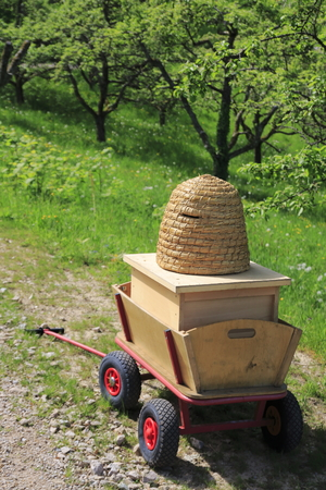 Beehive stands lonely on a meadow in a fruit property in Baden-Baden