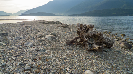 Alluvial, flotsam and jetsam, trunk, wood with holes passed through on the beach of Gravedona, Lake Como