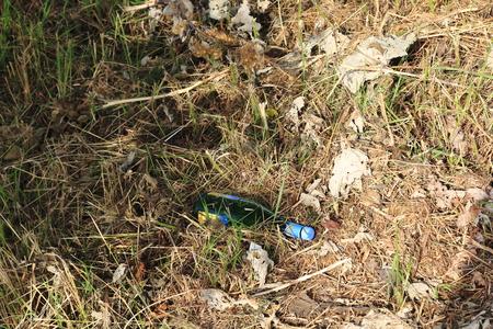 An empty bottle of wine, heedlessly thrown away on a meadow Stok Fotoğraf