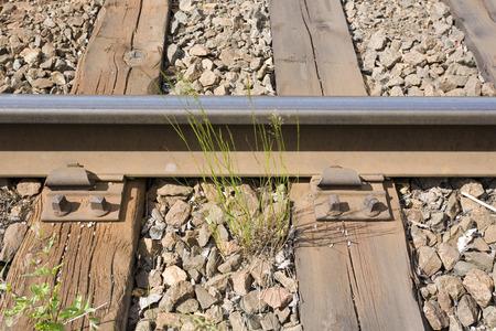 rusty: rusty rail