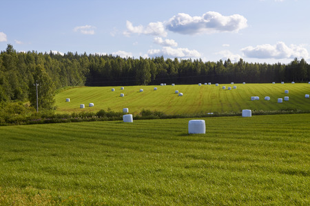 finland: rural landscape, Finland
