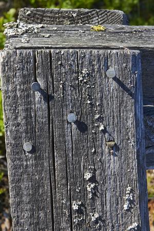 nailed: old grey wood