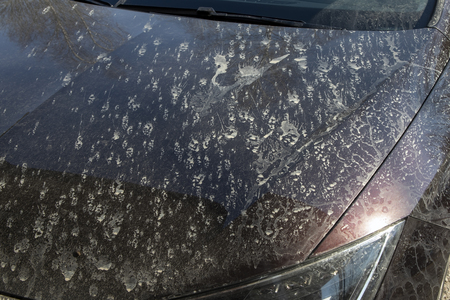 Splashes of mud on the hood of a car