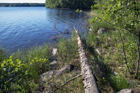 Lake scenery in Malonsaari, Imatra Finland
