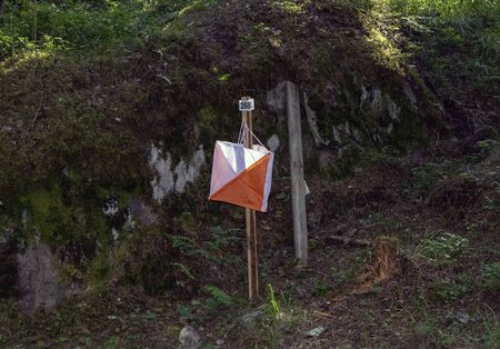 Orienteering control point in a forest, Finland Imagens - 131843706