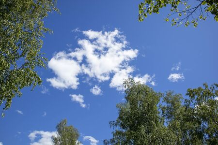 white clouds on a sunny summer sky Imagens