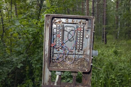 old electrical box in the woods Imagens - 131800770