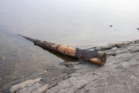 stranded log on shoreline, Finland Imagens