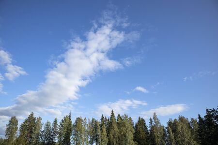 treetops and clouds against blue sky background Imagens - 131843755
