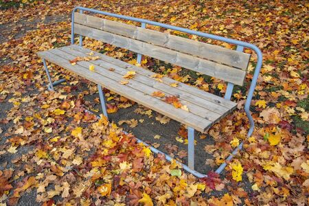 empty bench in a autumnal city park Stock Photo