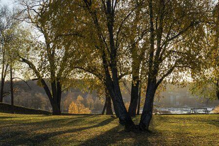 autumn foliage in city park, Lappeenranta Finland