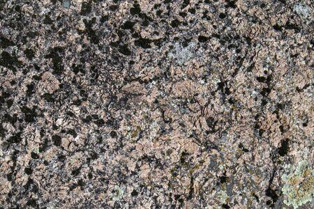 rapakivi granite surface, Finland Stock Photo