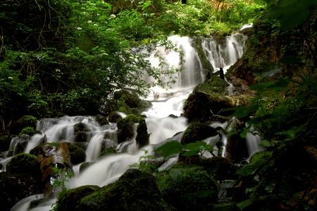 exuberant: yedigoller, waterfalls, rivers, trees, exuberant Stock Photo