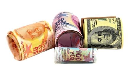 public servants: money, dollars, Turkish money isolated on white background