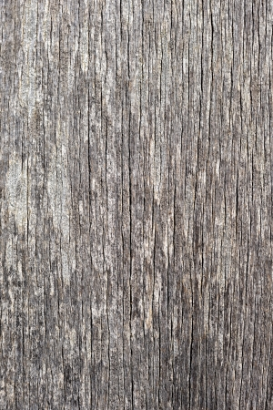 ie: wood textured background