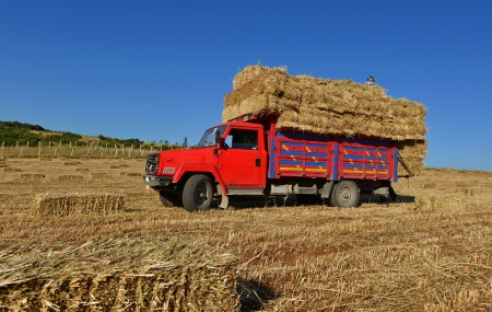 hay: Bales of hay being transported