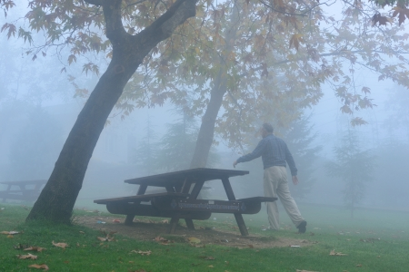 A man walking in the fog on a cold day in the park photo