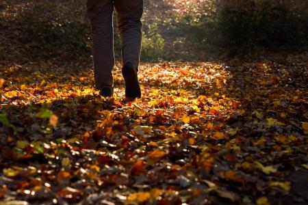 Ein Mann zu Fu� durch die Landschaft in der Herbstzeit