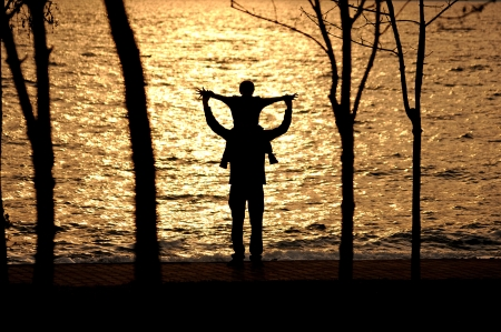 silhouette of the man who lift up children Stock Photo - 24502216
