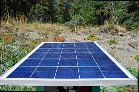 environmentalists: forest in front of solar panels Stock Photo