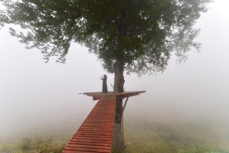 伝統: 霧にツリーの下で祈る女性のシルエットが表示されます。