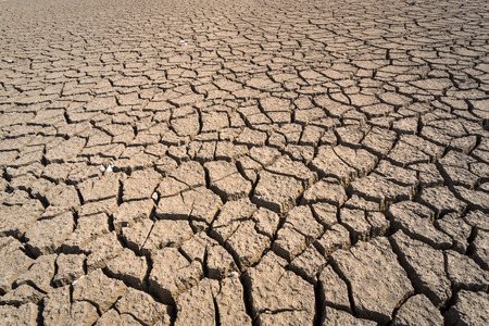 Desierto seco y agrietado. Fondo. La escasez global de agua en el planeta.